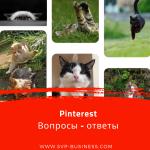 Pinterest. Вопросы – ответы про 2 аккаунта, типы пинов и подписи фото на Пинтерест.